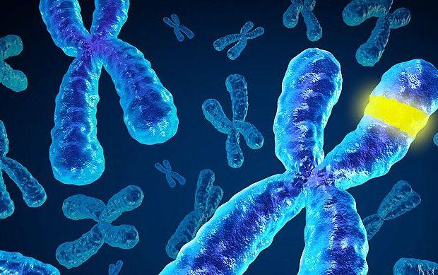 Ученые выявили ген, влияющий на развитие алкоголизма
