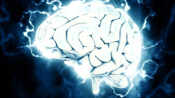 Ученые пояснили, как потеря веса улучшает память
