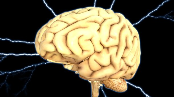 Как мозг изменяется с возрастом: исследование китайских ученых