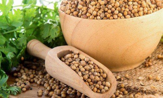 Как перезагрузить щитовидную железу при помощи семян кориандра