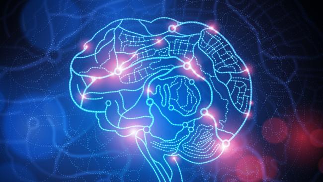Ученые, втыкающие иголки в мозг, задумались о том, что иголки делают с мозгом