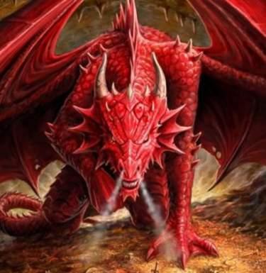 Драконы помогут в производстве антибиотиков