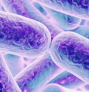 Бактериальный белок мимикрирует под ДНК, чтобы прорвать оборону клетки