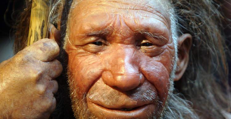 Гены неандертальцев связали с плохим сном и ожирением