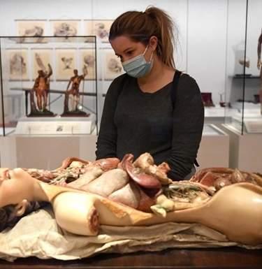 COVID-экспозиции. Что покажут музеи о коронавирусеСюжет